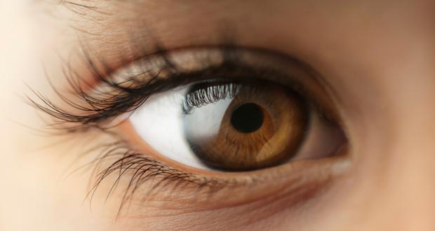 Созданы глазные капли, способные победить катаракту