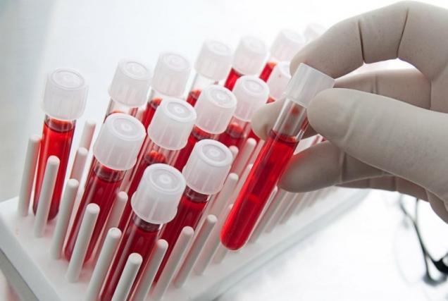 На международном саммите в Праге обсудили новинки в лечении гемофилии