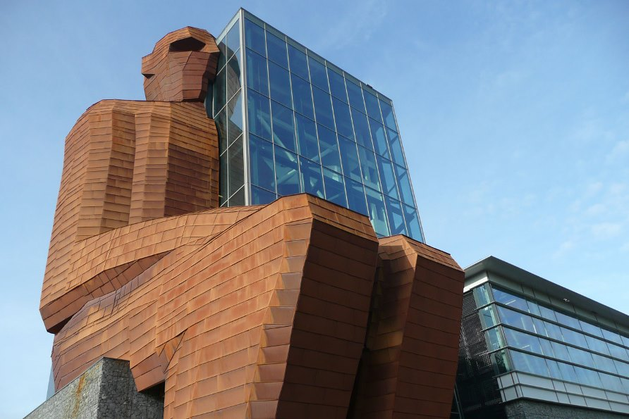 Музей человеческого тела в Амстердаме