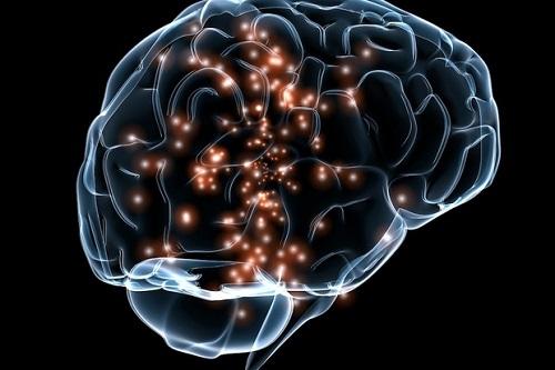 Нейронная активность мозга